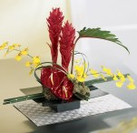 high style & exotic fresh flower arrangements
